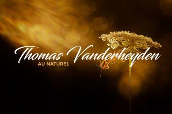Thomas-Vanderheyden-1
