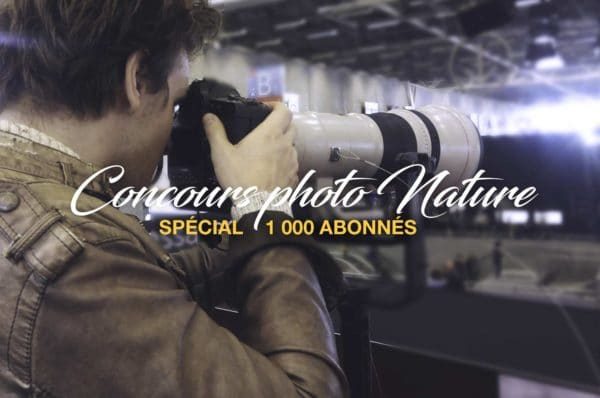 Concours-photo-Nature