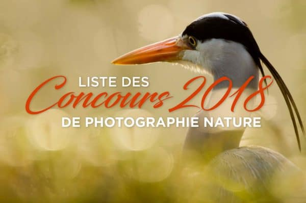 concours-photo-nature-2018-1
