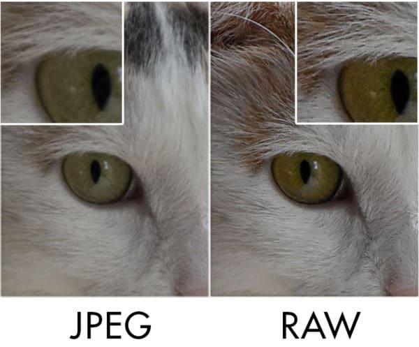 jpeg-vs-raw