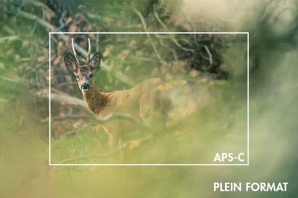 Plein-format-vs-APS