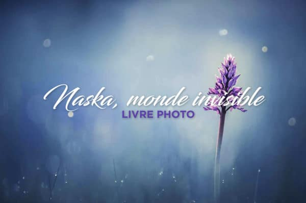 naska, monde invisible