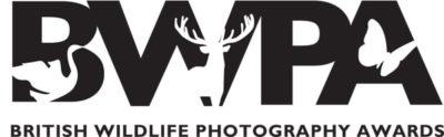 Concours photo BWPA logo